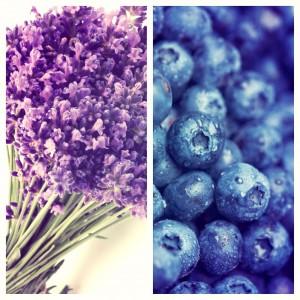 Blueberries & Lavender