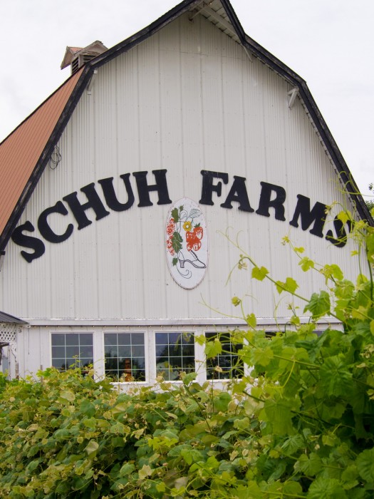 20160609-Schuh Farm-586